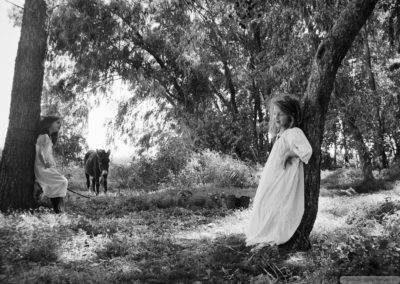 Ella in the Woods